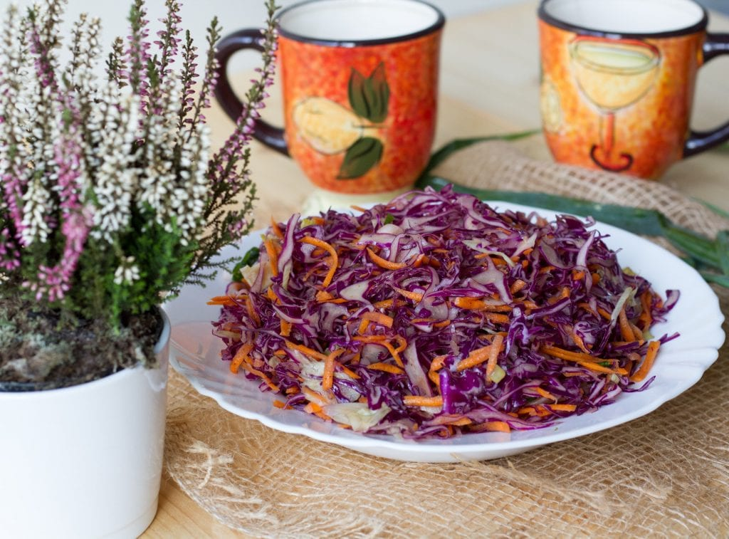 Salad from red cabbage and fennel